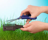 Cuting grass by hairdressing scissors Royalty Free Stock Photography