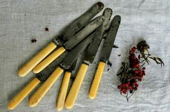 cutlery Immagine Stock Libera da Diritti