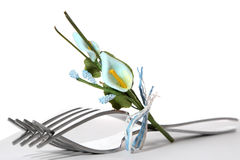 Cutlery Royalty Free Stock Photo