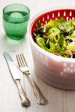 Cutlery Bush of Green Salad and Glass of Water Royalty Free Stock Images