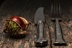 Cutlery and chestnut on a rustic wooden table