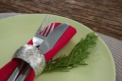 Cutlery with napkin and fern in a plate. Close-up of cutlery with napkin and fern in a plate Royalty Free Stock Image