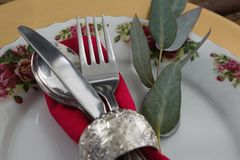 Cutlery with napkin and leaf in a plate. Close-up of cutlery with napkin and leaf in a plate Royalty Free Stock Photos