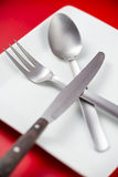 Cutlery. And plate with a red background Stock Photography