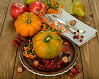 Cutlery and pumpkin Stock Images