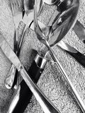Cutlery. View if cutlery and pizza cutter in monochromatic tone Royalty Free Stock Image
