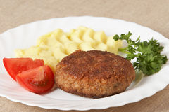 Cutlet Royalty Free Stock Photos