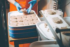 Cutlet making factory royalty free stock photos