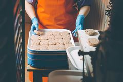 Cutlet making factory stock photo