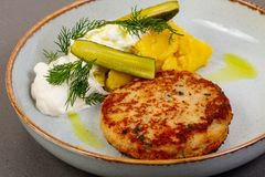 Cutlet with pike fish. And pickled cucumbers stock image