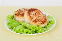 Cutlet on a plate Royalty Free Stock Photos