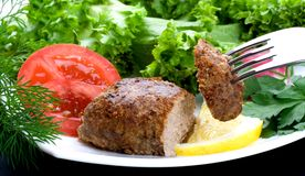 Cutlet on a plug Royalty Free Stock Image