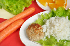 cutlet with rice and vegetables Stock Image