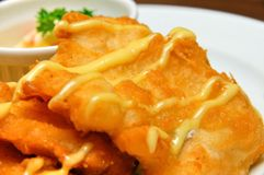 cutlet ryba smażący posiłek Zdjęcie Stock