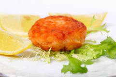 Cutlet from a salmon stock photos