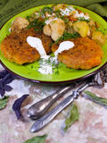 Cutlets καρότων με τα λαχανικά Στοκ εικόνες με δικαίωμα ελεύθερης χρήσης