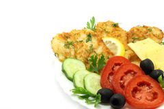 Cutlets composition. On a white background Royalty Free Stock Images