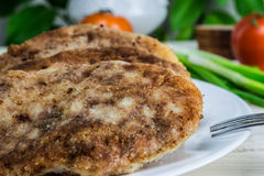 Cutlets. With green onions and tomatoes, bread Stock Image