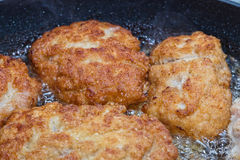 Cutlets from minced meat fried in a pan Royalty Free Stock Photo