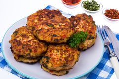 Cutlets od mięsa i warzyw Zdjęcie Royalty Free