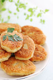 Cutlets with parsley Royalty Free Stock Images