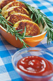 Cutlets and rosemary Stock Images