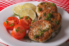 Cutlets from white fish fillets with herbs close-up. horizontal Royalty Free Stock Photos