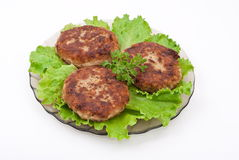Cutlets With Salad Leaves Royalty Free Stock Photography
