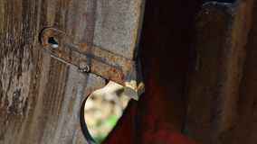 Cutoff Log Slasher Tooth Detail Royalty Free Stock Photos