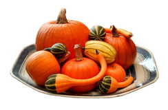 Cutout of pumpkins, ornamental gourds and a delicata squash on a ceramic platter. royalty free stock images