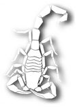 Cutout scorpion design Royalty Free Stock Photography
