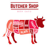 Cuts of beef diagram. Butcher shop cuts of beef . Vector illustration Royalty Free Stock Photos