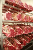 Cuts of beef on shelves in an abattoir Royalty Free Stock Photo