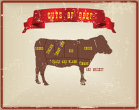 Cuts of beef. Vintage old style card, cuts of beef Royalty Free Stock Photography