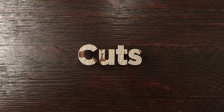 Cuts - grungy wooden headline on Maple  - 3D rendered royalty free stock image Royalty Free Stock Photos