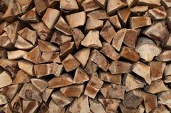 Cutted山毛榉的木材 免版税图库摄影