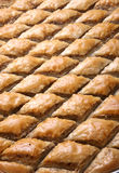 cutted baklava Royaltyfri Foto