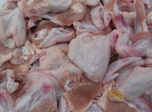 Cutted chicken meat Stock Image