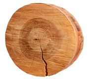 Cutted circular slice of the brown wooden log on a white isolated background.  Royalty Free Stock Photos