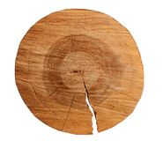 Cutted circular slice of the brown wooden log on a white isolated background.  Stock Image