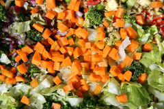 Cutted fresh vegetables salad ingredients on cutting board Royalty Free Stock Images