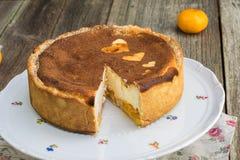 Cutted gebakken die kaastaart met mandarijntjes met coc worden bestrooid Royalty-vrije Stock Foto