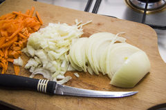 Cutted Natural carrots and onions with knife blade Stock Photography