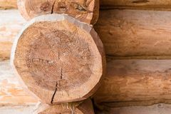Cutted off log in the wooden structure of the building. Closeup texture, wooden pattern. With copy space Stock Images