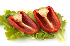 Cutted sweet red pepper on salad leaves Royalty Free Stock Image