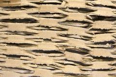 cutted tło karton Zdjęcie Royalty Free