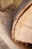 cutted trä Royaltyfria Foton