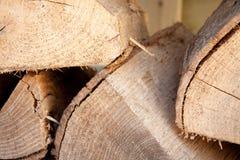 cutted trä Fotografering för Bildbyråer