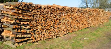 cutted trä Arkivfoto