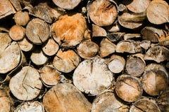 Cutted trocknete Holz für das Feuer Stockbild